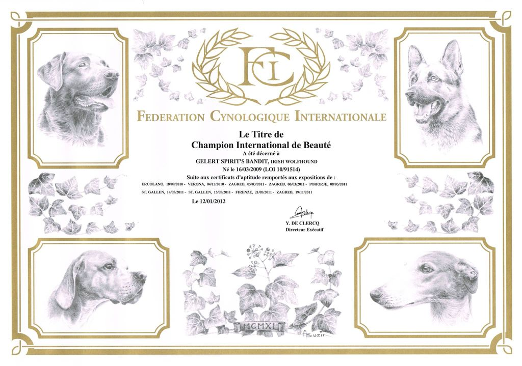 Internationaal kampioen